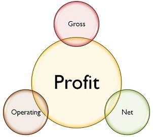 What's the difference between gross profit margin and net profit margin?