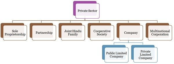 types of business organization in the private sector economics essay The 3 main business sectors are: - private sector  i will describe the form of ownership which includes public/private/voluntary sector type of ownership and main implications  p5 describe the influence of two contrasting economic environment on business activities within a selected organisation.