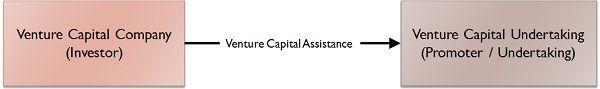 Graphical Representation of Venture Capital