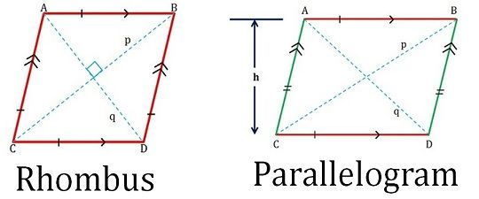 Difference Between Rhombus And Parallelogram With Comparison Chart