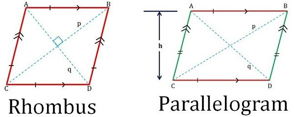 rhombus vs parallelogram