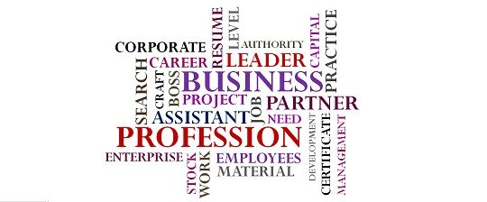 Comparison of Business, Professions and Employment