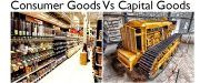 capital goods vs consumer goods