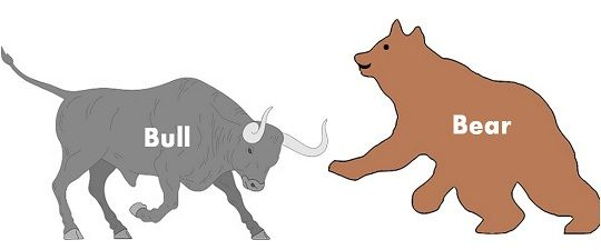 bear vs bull market definition