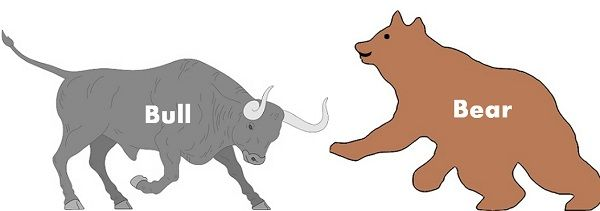 bull vs bear market