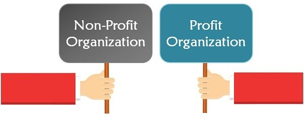 Difference Between Profit And NonProfit Organisation With And