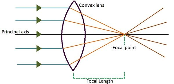 Simple Convex Lens Diagram Wiring Diagram Electricity Basics 101