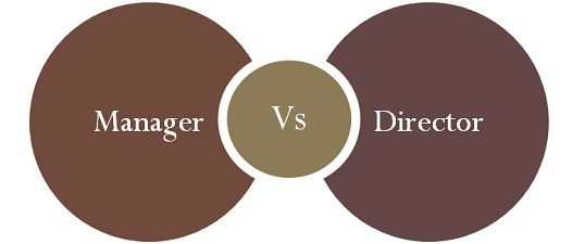 What Are The Key Differences Between An Executive And A Non >> Difference Between Manager And Director With Comparison