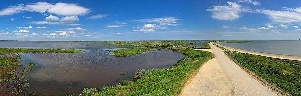 Estuary Vs Delta