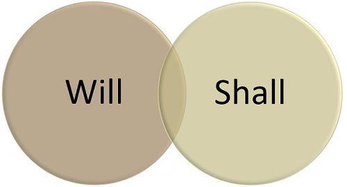 will vs shall