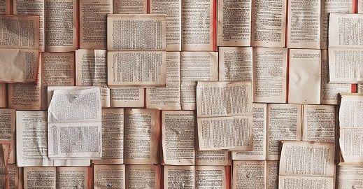 novel vs book