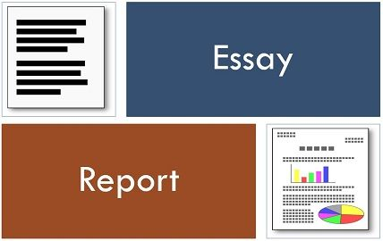 essay vs report