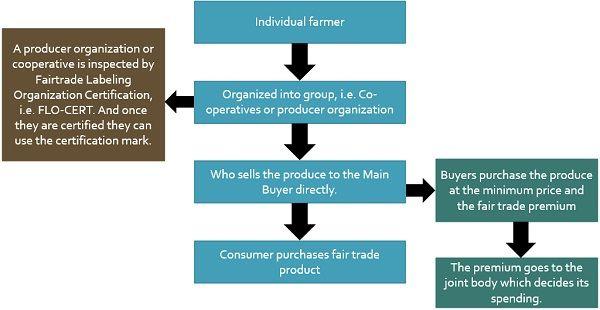 fair-trade-model