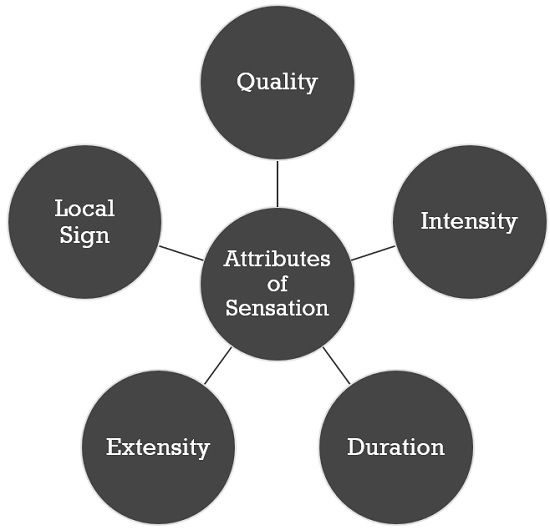 attributes-of-sensation